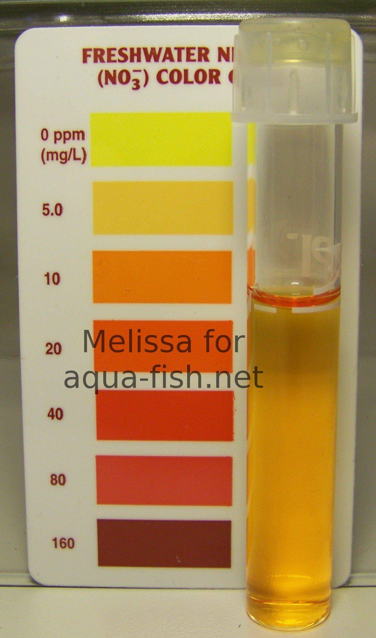 Controlling ammonia and related substances in aquariums for High nitrite in fish tank